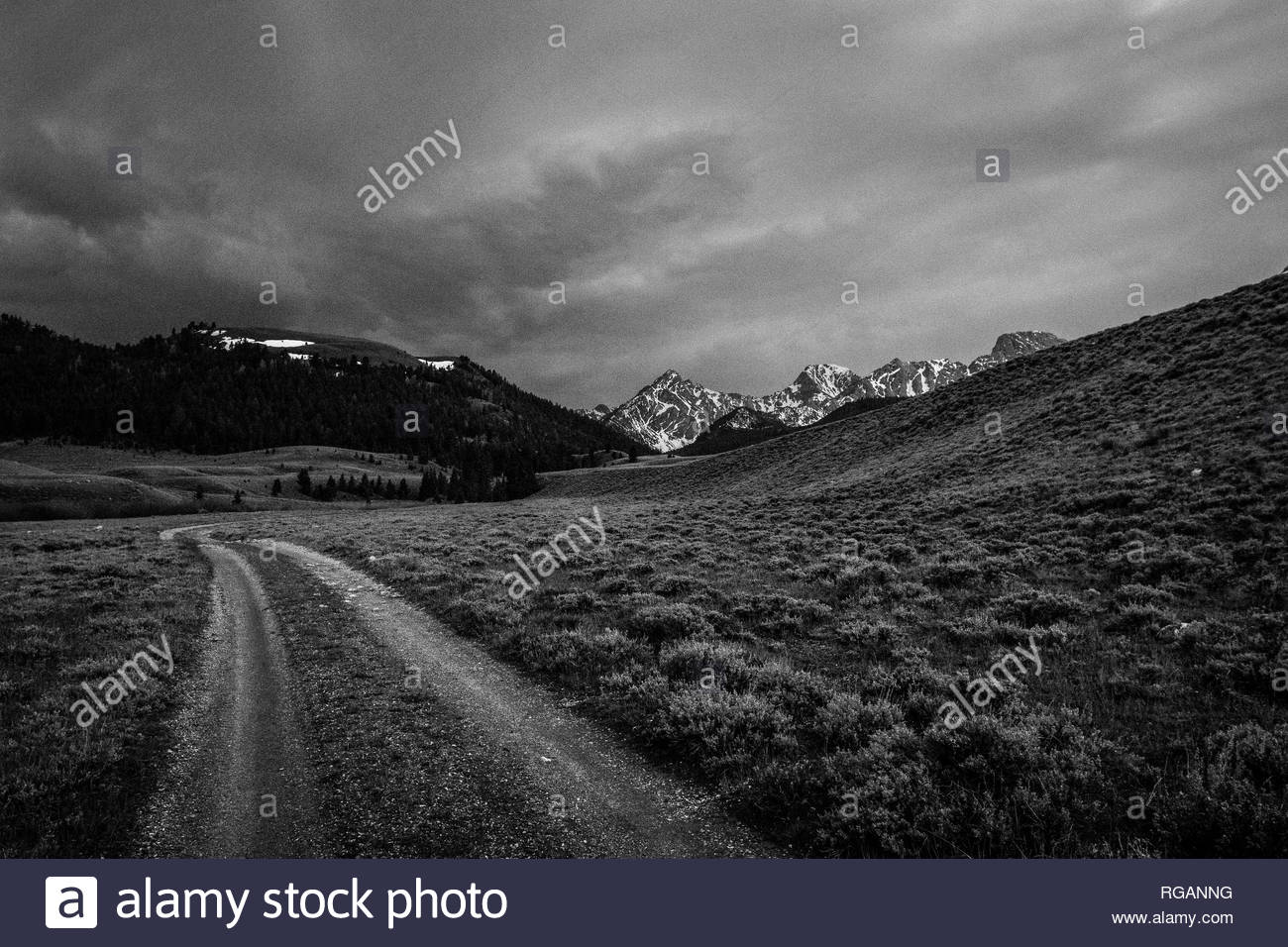 The road to somewhere. Beautiful spring off road drive in Central Idaho. - Stock Image