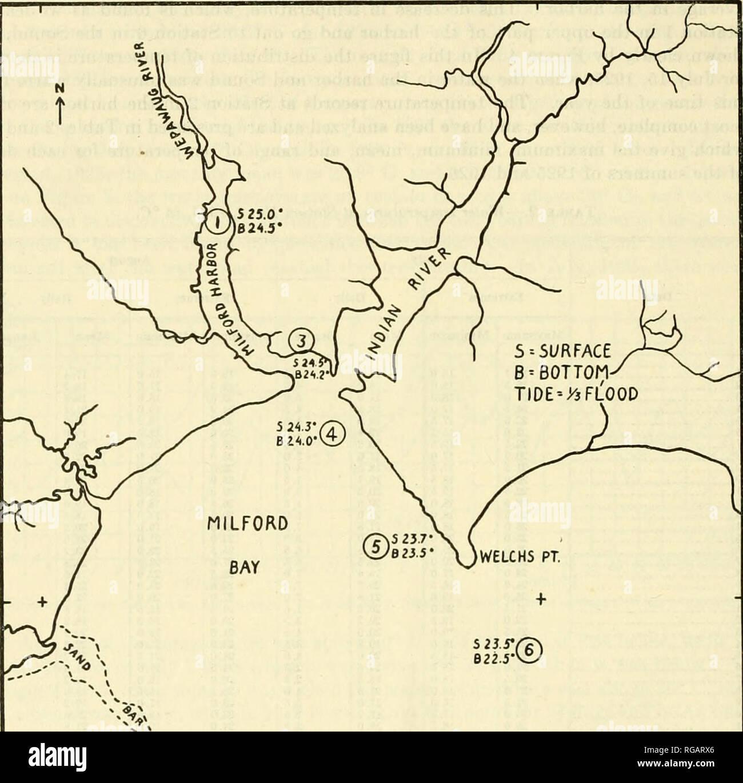 Long Island Bureau.Bulletin Of The United States Fish Commission Fisheries United