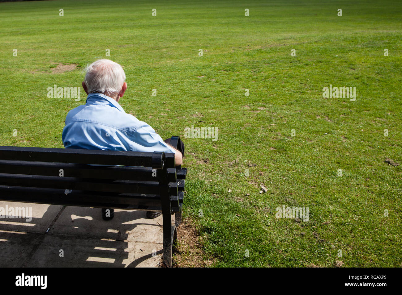 Old man on bench looking out at a park in Summer Stock Photo