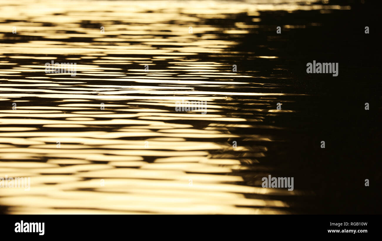 closeup of calm golden ripples on water at sunset. beautiful smooth silky soft waves on a lake at twilight. silk like abstract pattern with glimmering - Stock Image