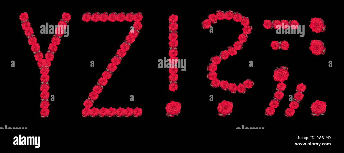 High resolution large color floral/flower characters/letters Y Z and puncuation marks constructed from rose blossom macros on black background - Stock Image