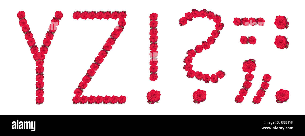 High resolution large color floral/flower characters/letters Y Z and puncuation marks constructed from rose blossom macros on white background - Stock Image