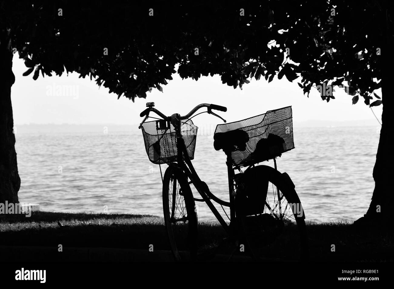 GARDA, ITALY - SEPTEMBER 2018: Black and white view of a bicycle with baskets parked on the lakeside in Garda on Lake Garda. The view is framed by tre - Stock Image
