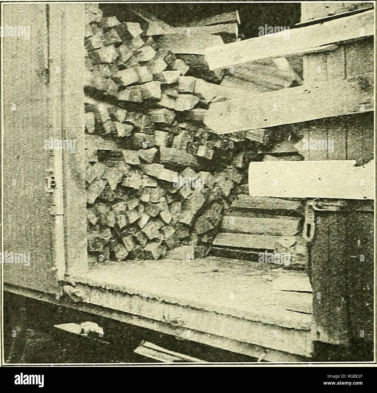 """. Bulletin of the U.S. Department of Agriculture. Agriculture; Agriculture. 26 BULLETIX 1037, U. S. DEPARTMEXT OF AGEICULTUEE. size and kind of material.^^ """"When sufficiently dry, sliipments in closed box cars will suffer little or no loss from sap-stain or mold. In all cases where air seasoning is resorted to, unless great care is exercised in providing for ample circulation of air through the stock by such means as open piling, fungous and insect troubles are likely to develop. It is absolutely necessary to strip or cross pile the stock upon dry foundations. For purposes of stripping, k - Stock Image"""