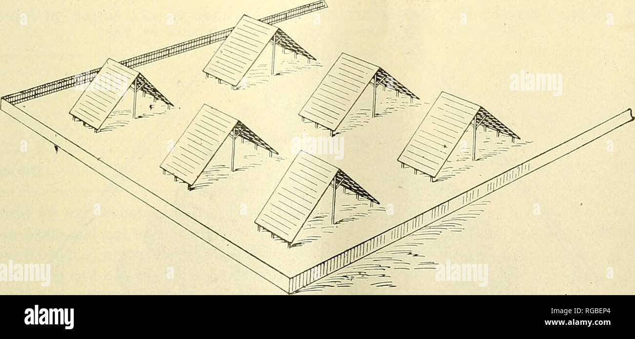 """. Bulletin of the U.S. Department of Agriculture. Agriculture; Agriculture. COTTON"""" WAEEHOUSE CONSTRUCTION. 25 lengths to one end of the shed.) The bottom line of the lower layer of cotton should be at least 10 inches above the ground and should be piled in tiers so arranged that the eaves on the extreme ends of the roof extend 3 feet beyond the outer line of cotton. ^ 6 FOOT 0O^RO F£TA/C£T ^ f- /S^>*—35- -35- 25->* 35- J5± ^ 6 FOOT 3QA/TO FFA/CE-^, Fig. 9.—Emergency sheds—plan for 1 group of 15 units. Arrangement of units.—The units should have at least 25 feet of clear space on al - Stock Image"""
