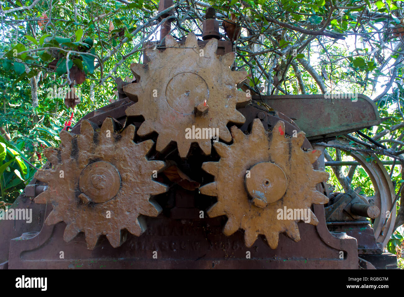 Gears or gears of rusty metal left unused, old sugar cane milling - Stock Image