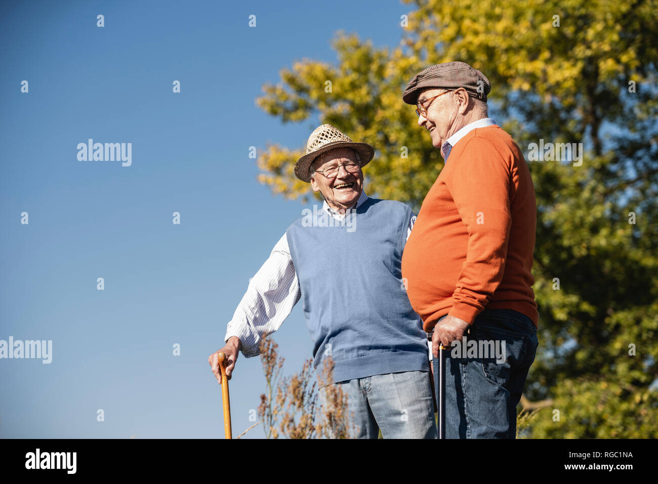 Two old friends taking a stroll through the fields, talking about old times - Stock Image