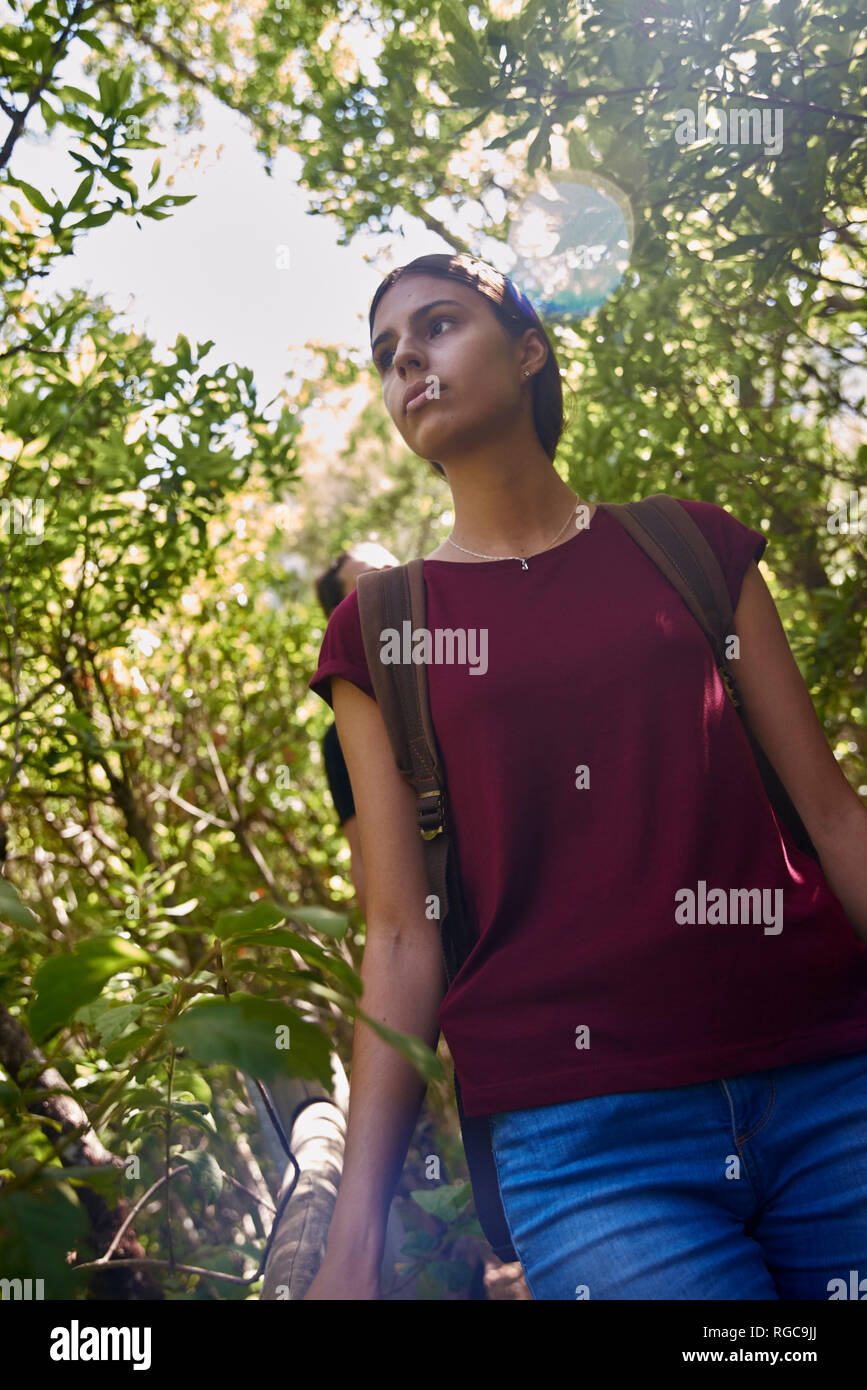 Spain, Canary Islands, La Palma, female hiker in a forest looking around Stock Photo