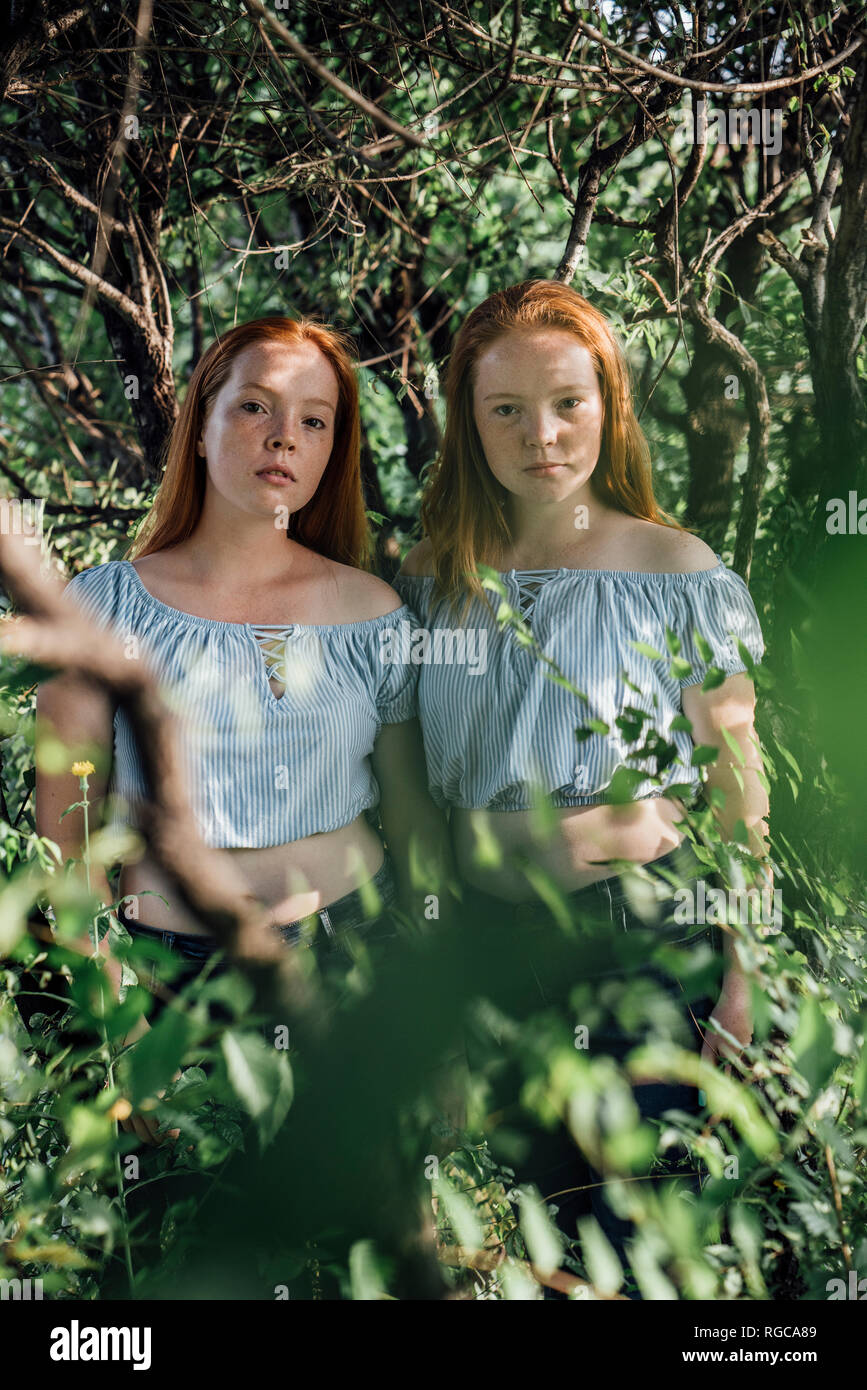 Redheaded twins at a tree - Stock Image