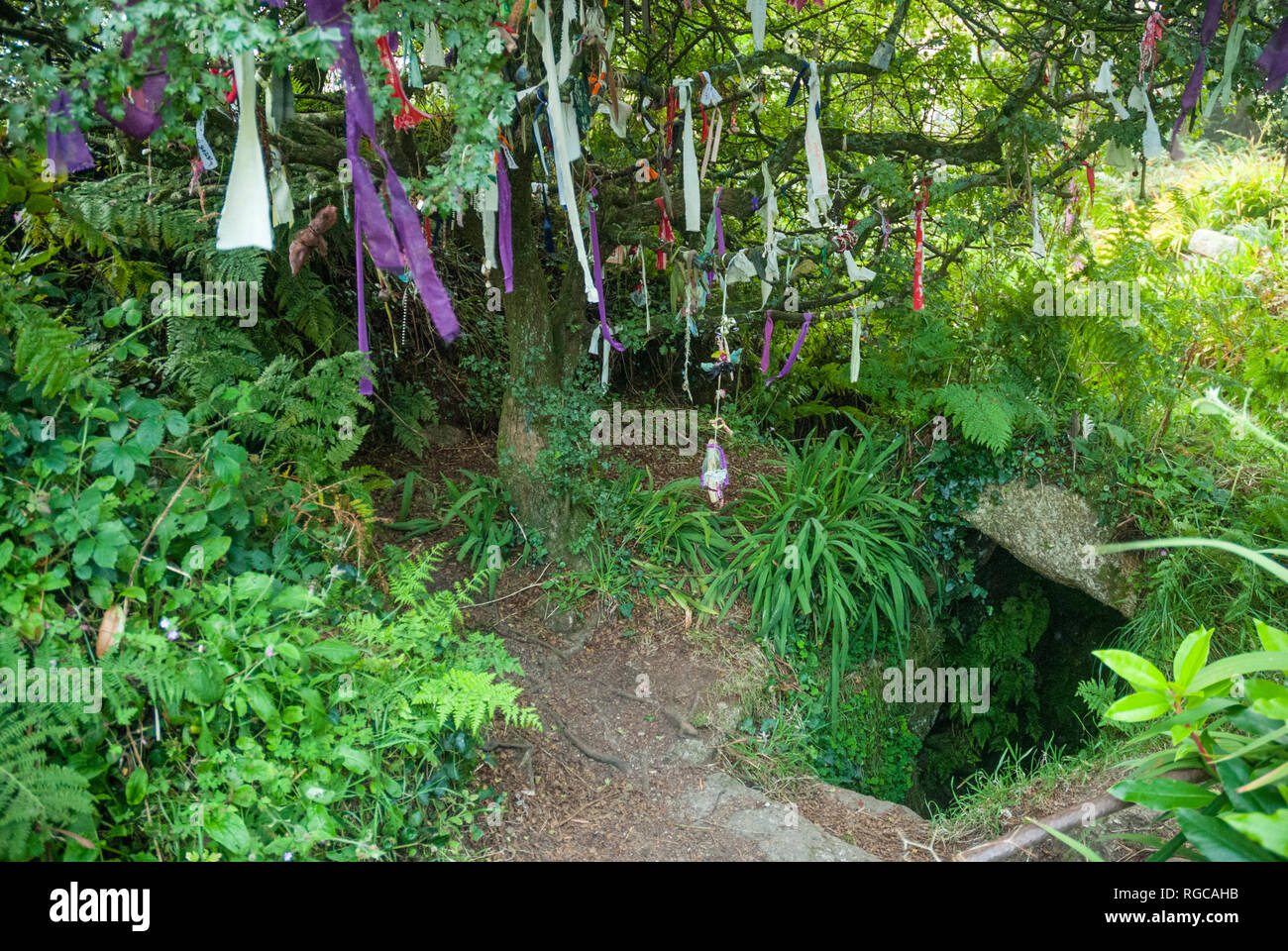The Sancreed Holy Well in Cornwall beside a 'cloutie tree', bedecked with strips of cloth, as part of a pagan or celtic tradition. - Stock Image
