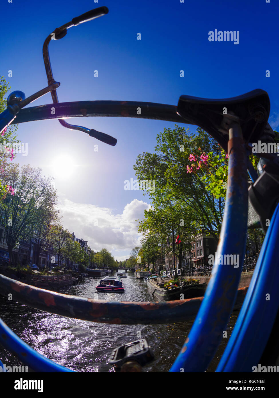 Netherlands, Amsterdam, bicycle at Prinsengracht - Stock Image