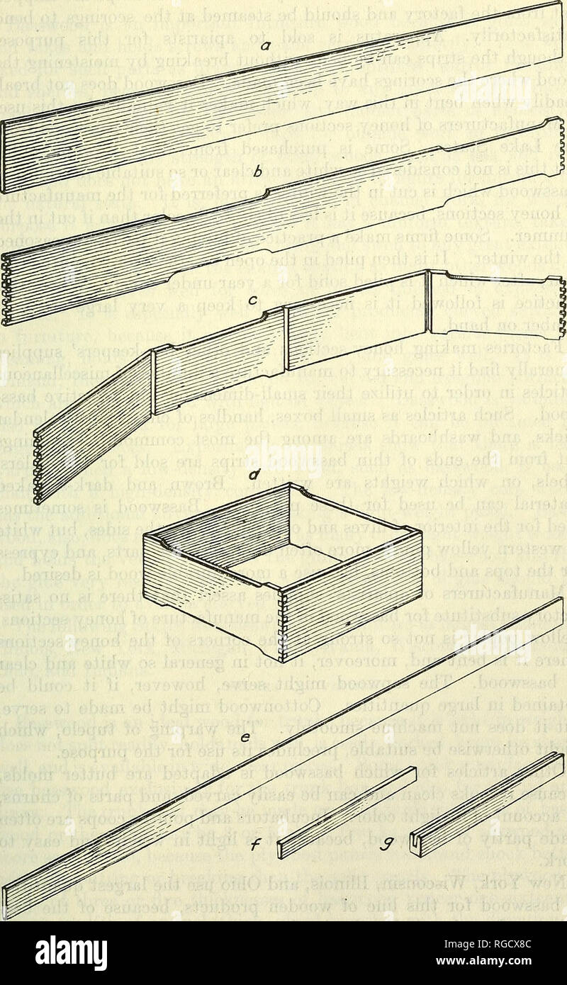 """. Bulletin of the U.S. Department of Agriculture. Agriculture; Agriculture. UTILIZATION OF BASSWOOD. 37. Fig. 6.—Apiarists' supplies made of basswood: a, b, c, and d—the different steps in the manufacture of the honey section,; e,f, and g—parts making up the """"fences"""" or separators that go between the honey sec- tions in the hive.. Please note that these images are extracted from scanned page images that may have been digitally enhanced for readability - coloration and appearance of these illustrations may not perfectly resemble the original work.. United States. Dept. of Agriculture. - Stock Image"""