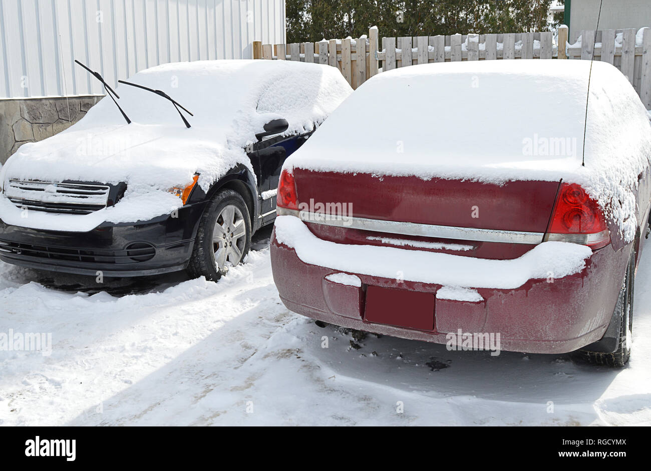 Two cars covered in freshly fallen snow during a typical canadian Winter day - Stock Image