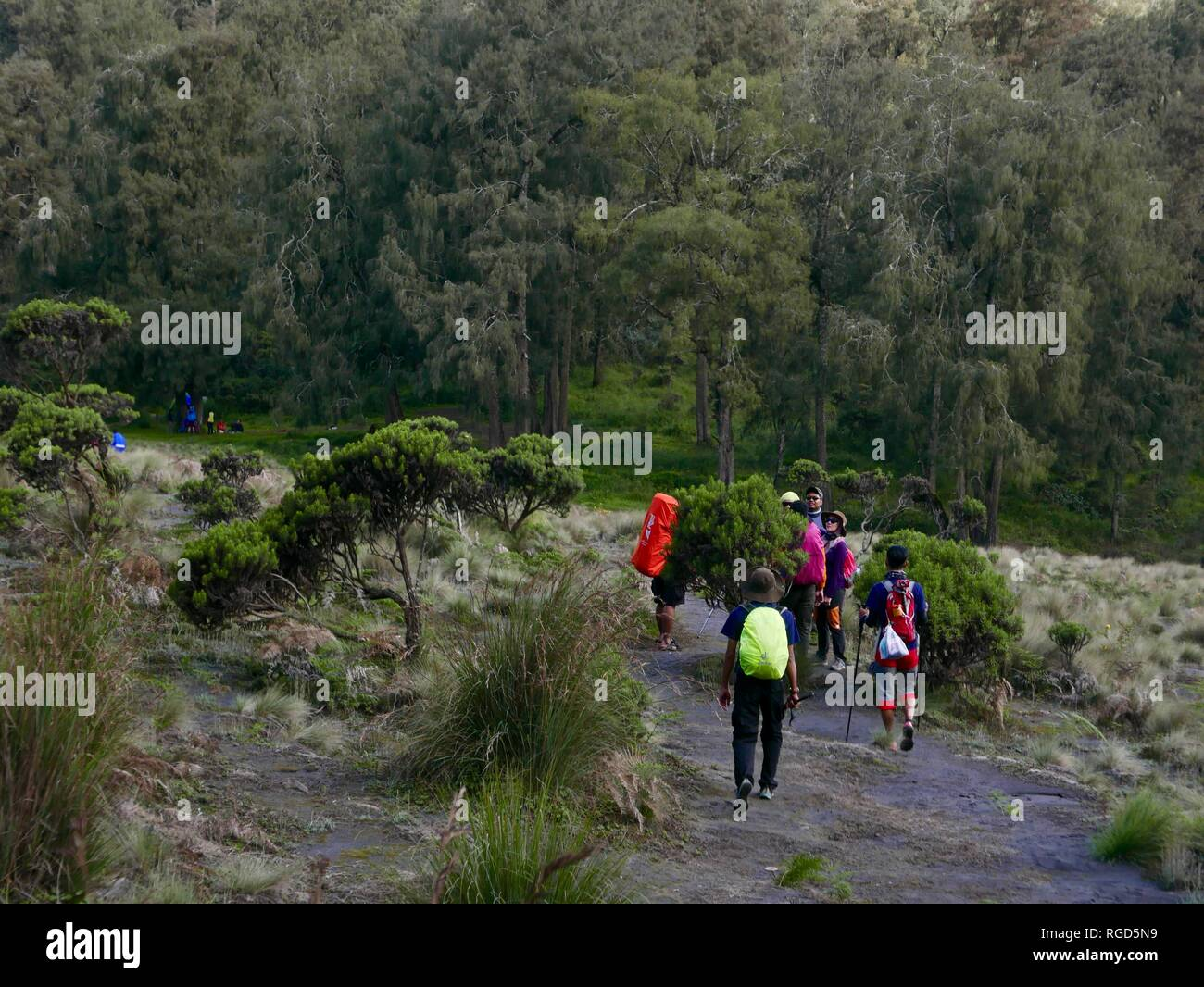 Explore Malang High Resolution Stock Photography And Images Alamy