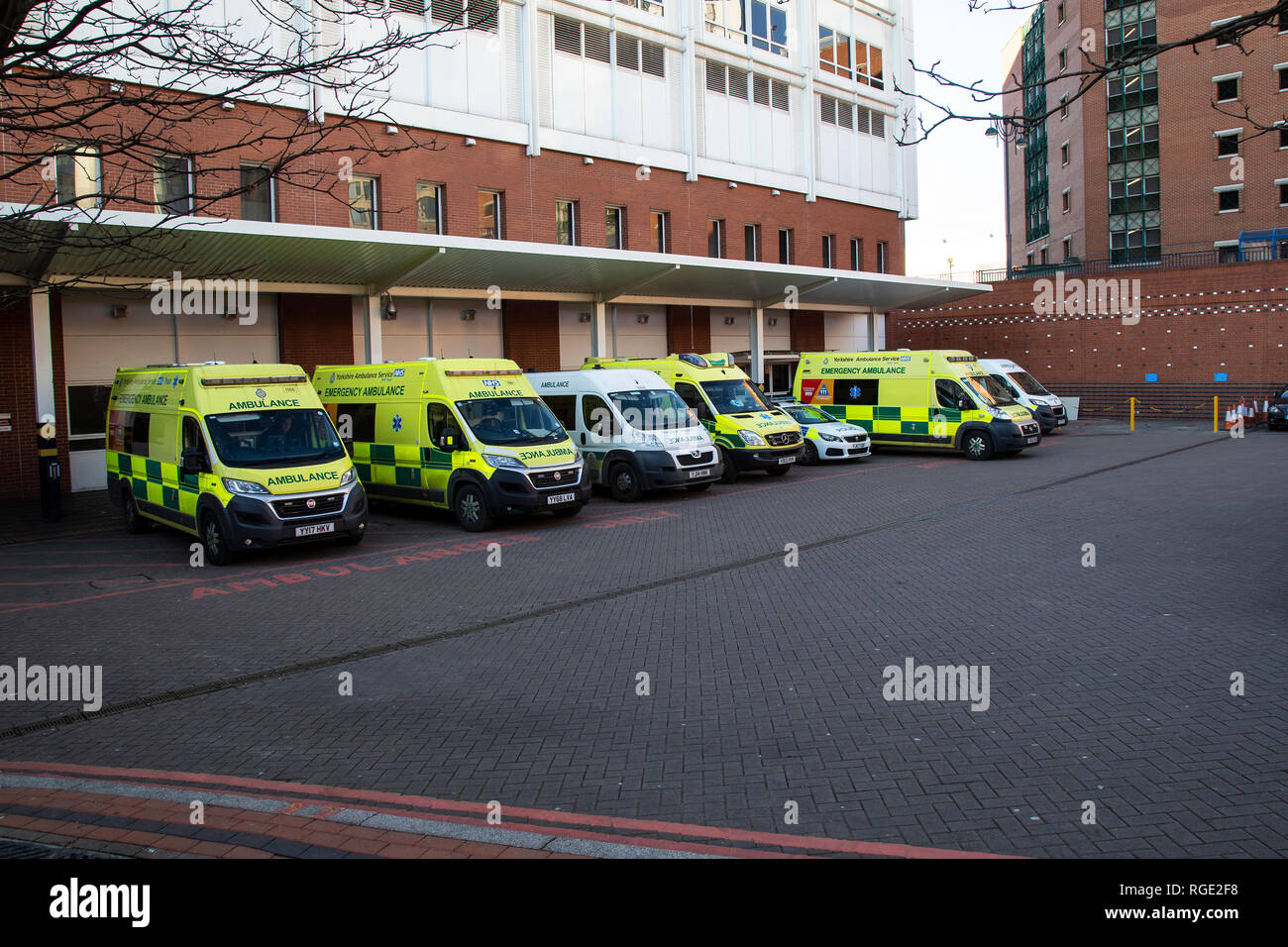 A fleet of ambulances outside the accident and emergency wing of Leeds General Infirmary, Leeds, Yorkshire U.K. - Stock Image