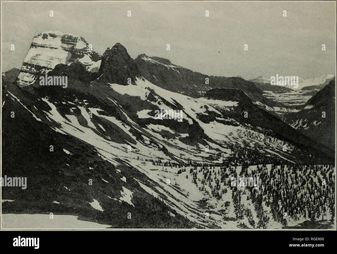""". Bulletin of the Geological Society of America. Geology. BULL. GEOL. SOC. AM. VOL 13, 19 1, PL. 5"""". Figure 1.—Panorama from Swift Current Pass, Lewis Range Looking south by east. East half from Gould on left to Stimpson and Blackfoot far off on right. Foreground of old valley floor continued in plate 51. Please note that these images are extracted from scanned page images that may have been digitally enhanced for readability - coloration and appearance of these illustrations may not perfectly resemble the original work.. Geological Society of America. [New York : The Society] - Stock Image"""