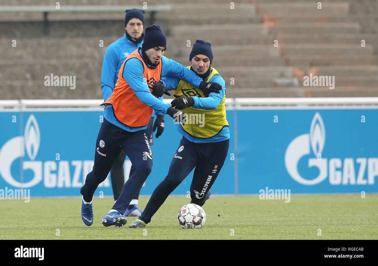 firo: 29.01.2019, football, 1.Bundesliga, season 2018/2019, FC Schalke 04, training, Suat SERDAR versus KUTUCU   usage worldwide - Stock Image
