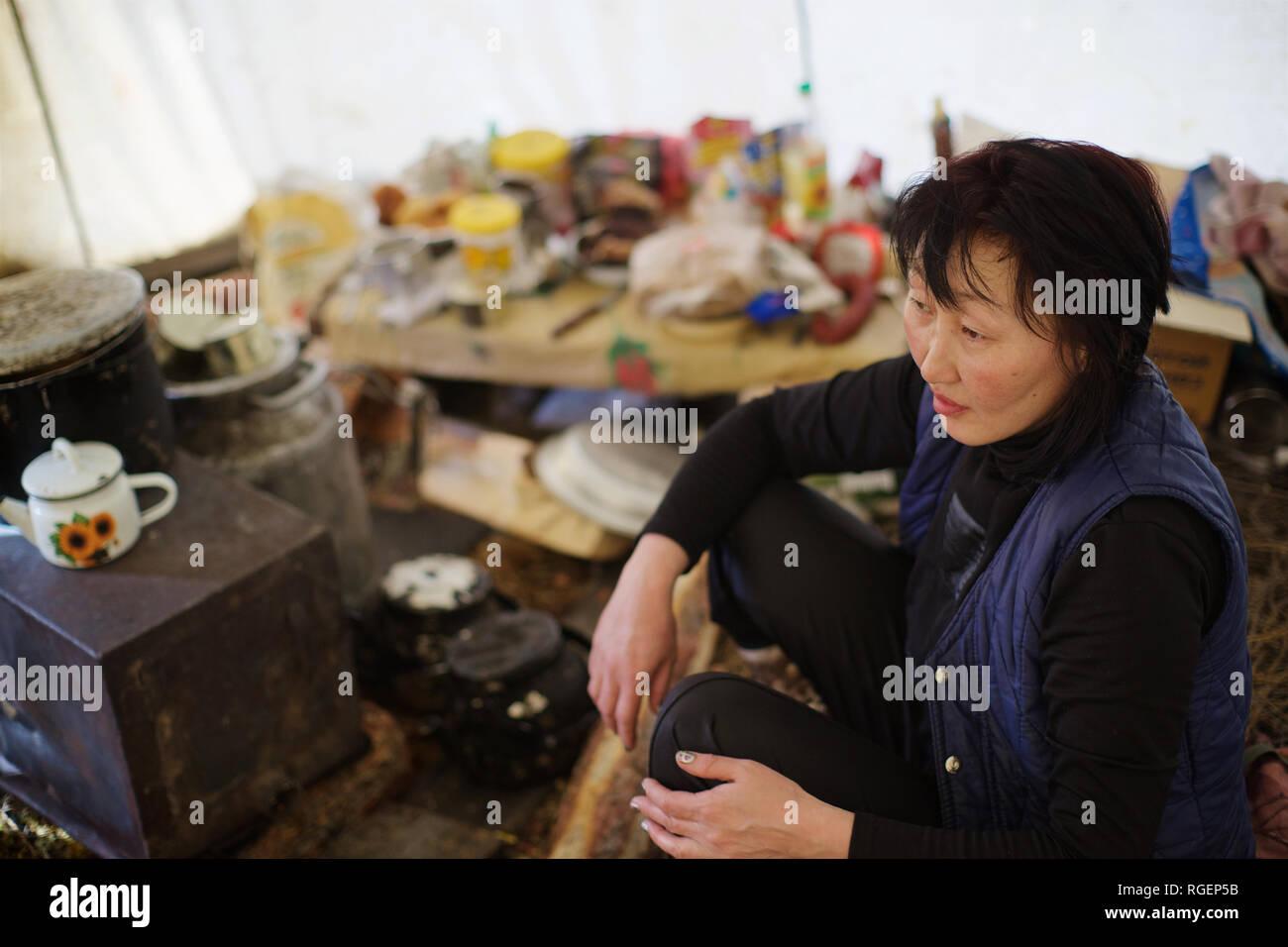 Even woman cooking in nomadic tent, Yakutia, Siberia, Russia - Stock Image