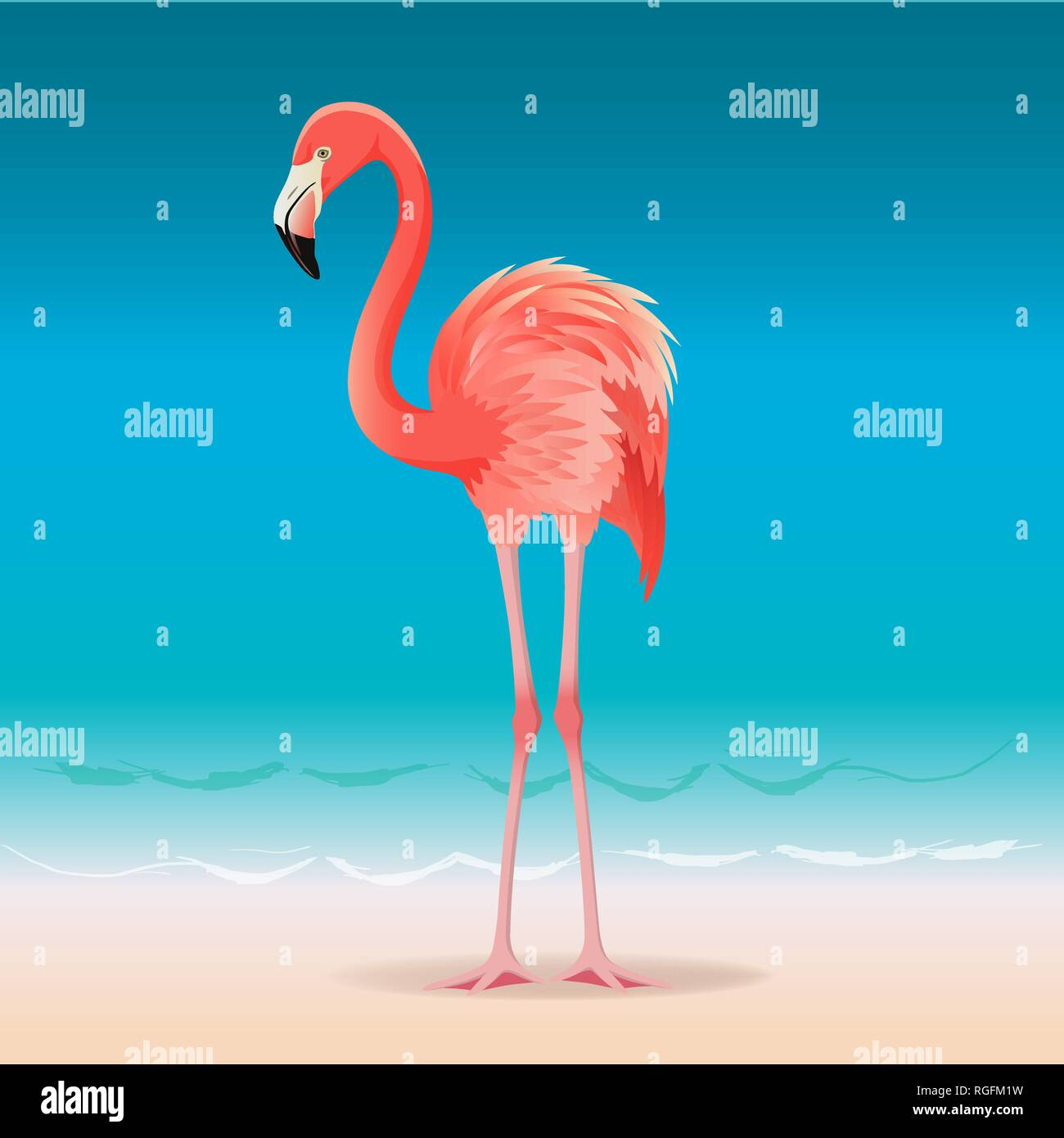 Exotic pink flamingo walking on the hot summer beach. Pink flamingo vector illustration. - Stock Vector