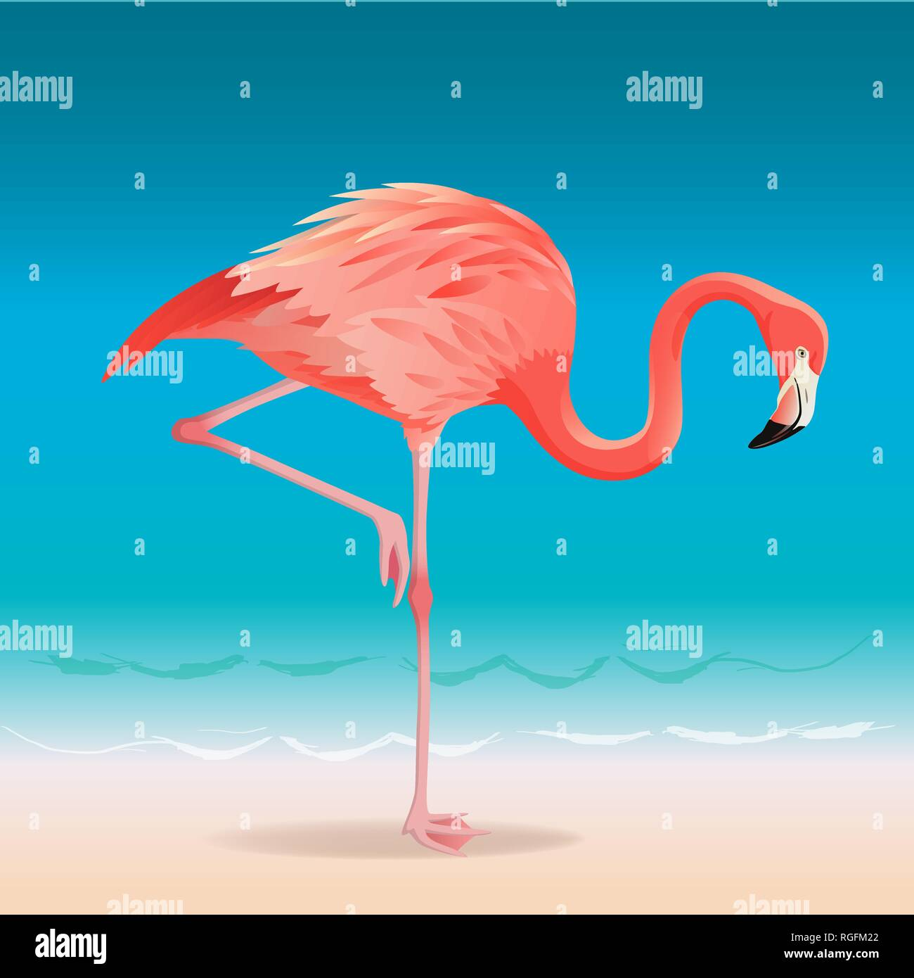 6de0e88f26 Exotic pink flamingo walking on the hot summer beach. Pink flamingo vector  illustration. -