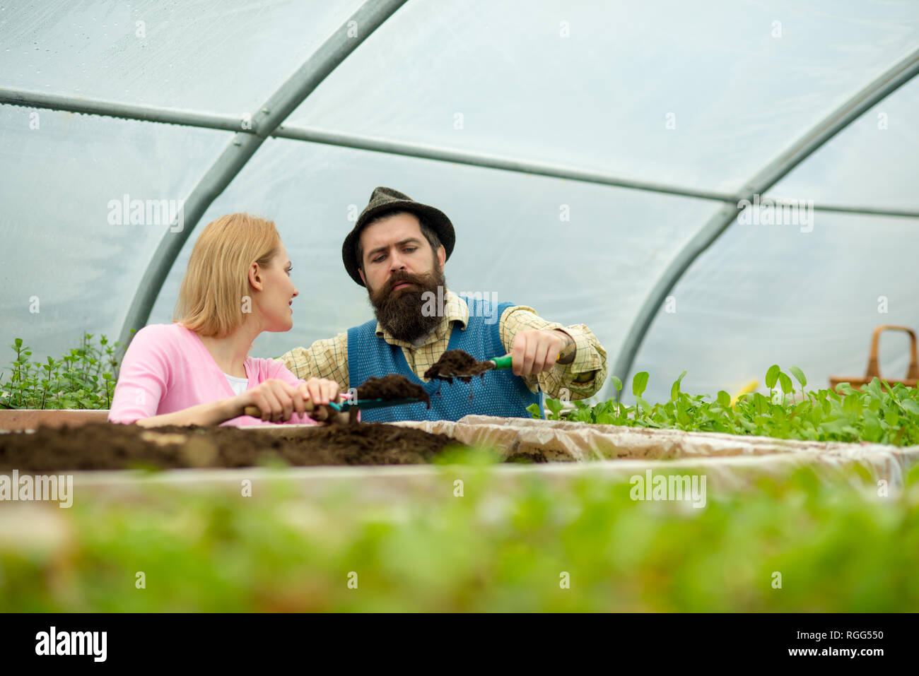 soil enrichment. soil enrichment with organic fertile. soil enrichment concept. soil enrichment by couple of gardeners. living a green life. - Stock Image