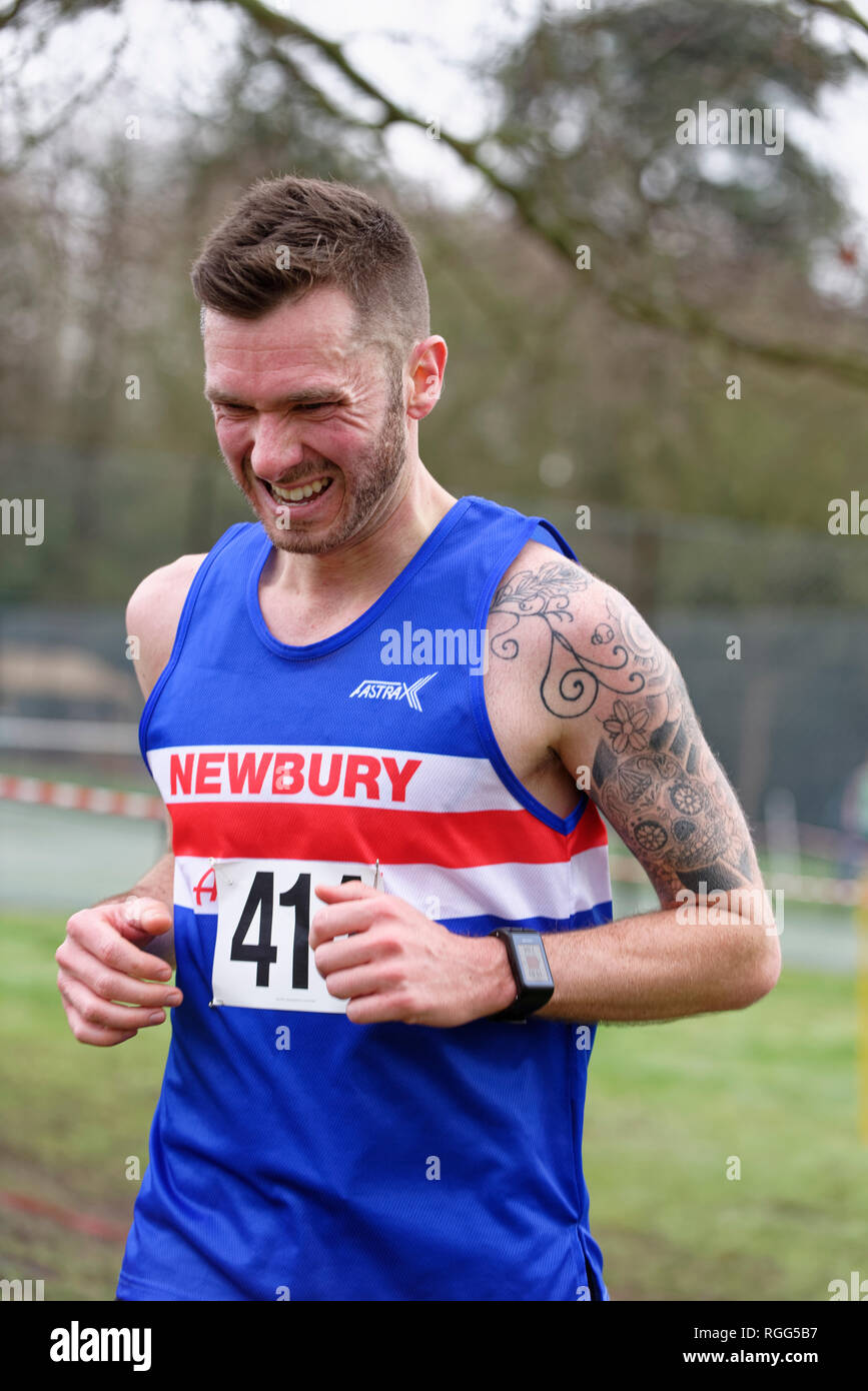 Cross country runner from Newbury Athletic Club putting in maximum effort dring a race near Reading Berkshire - Stock Image