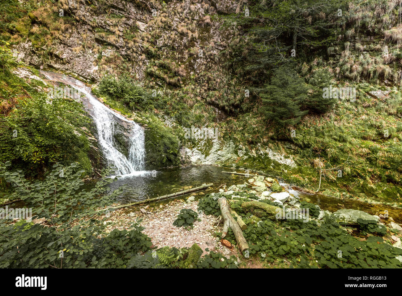 All Saints Waterfalls, town Oppenau, Northern Black Forest, Germany - Stock Image