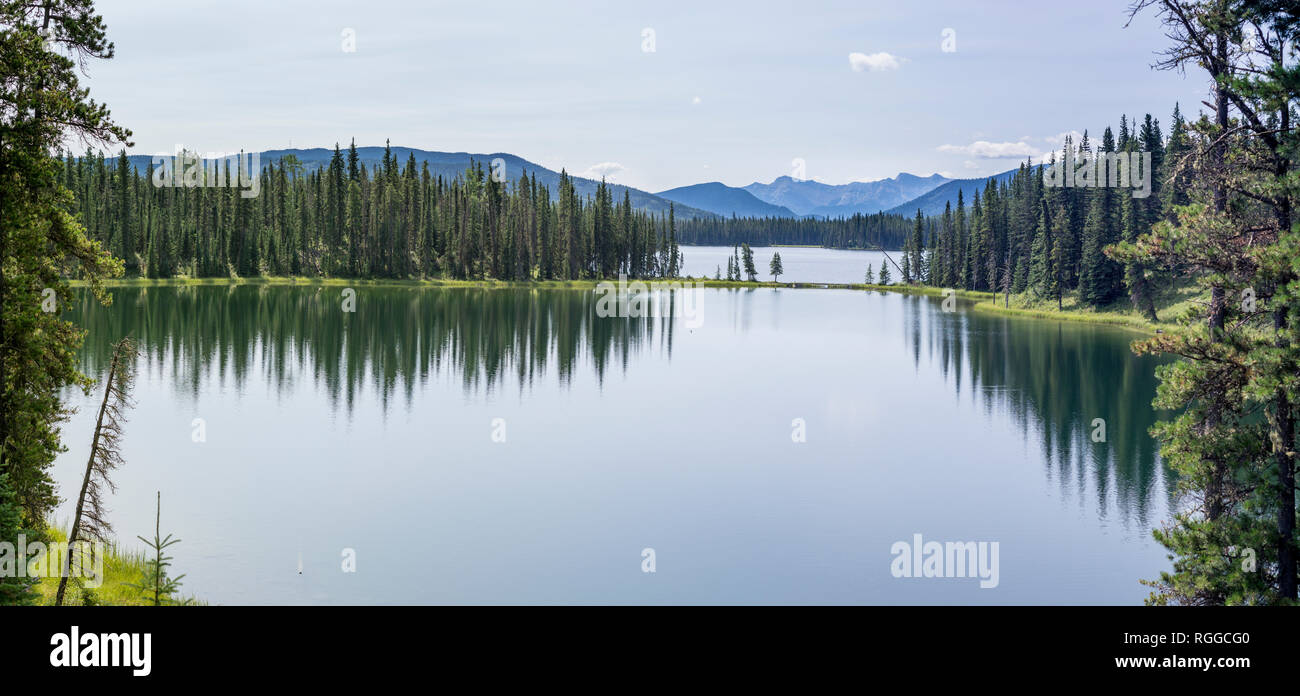Jarvis Lake inlet and pathway with the Rocky Mountains beyond: A high resolution panorama of Jarvis Lake in Alberta's Switzer Provincial Park near Hinton.  A loon floats in the inlet. - Stock Image