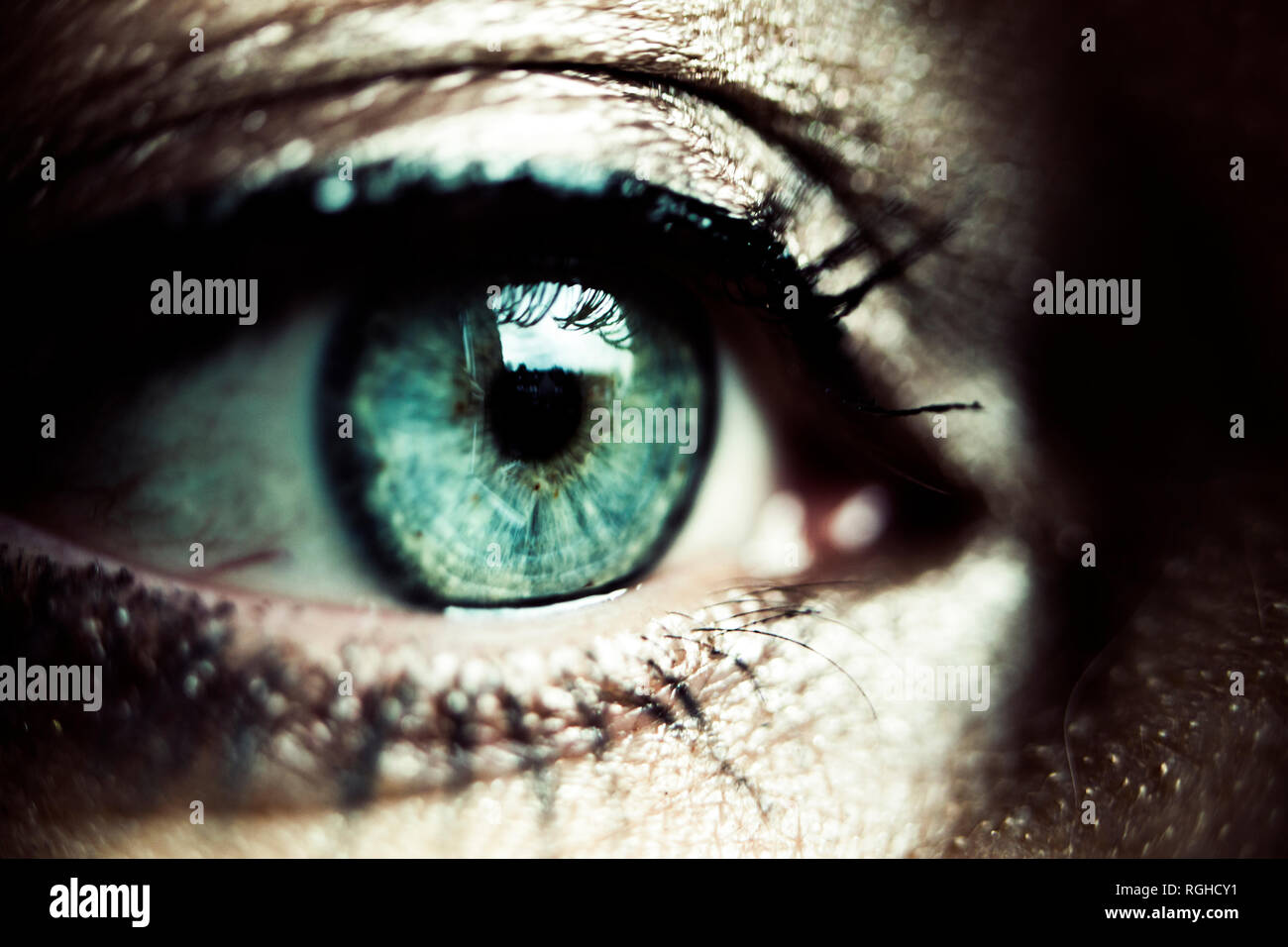Green eye of made-up woman, close-up - Stock Image