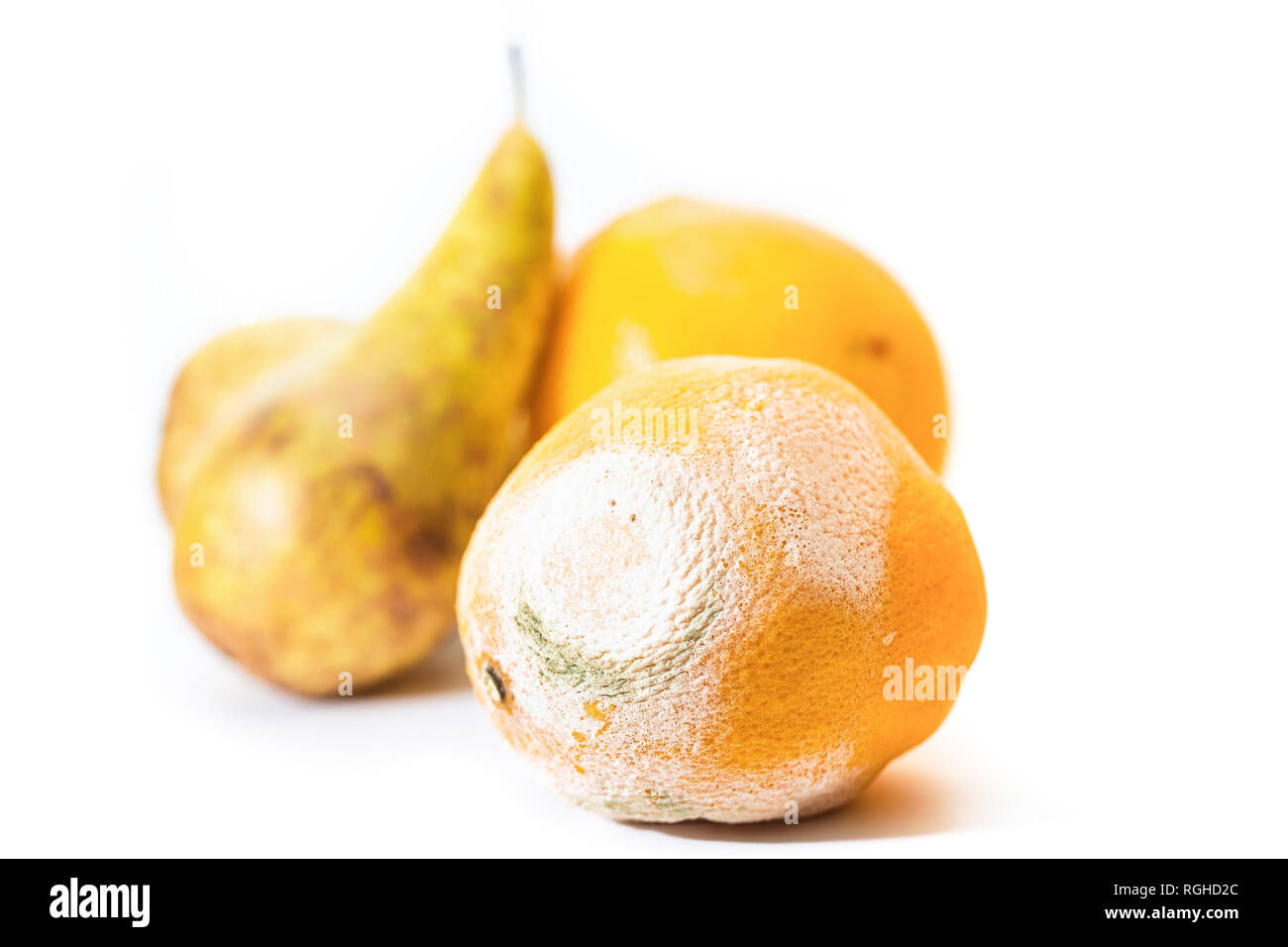 A spoiled orange with white and green mold, against a background of yellow fruit - Stock Image