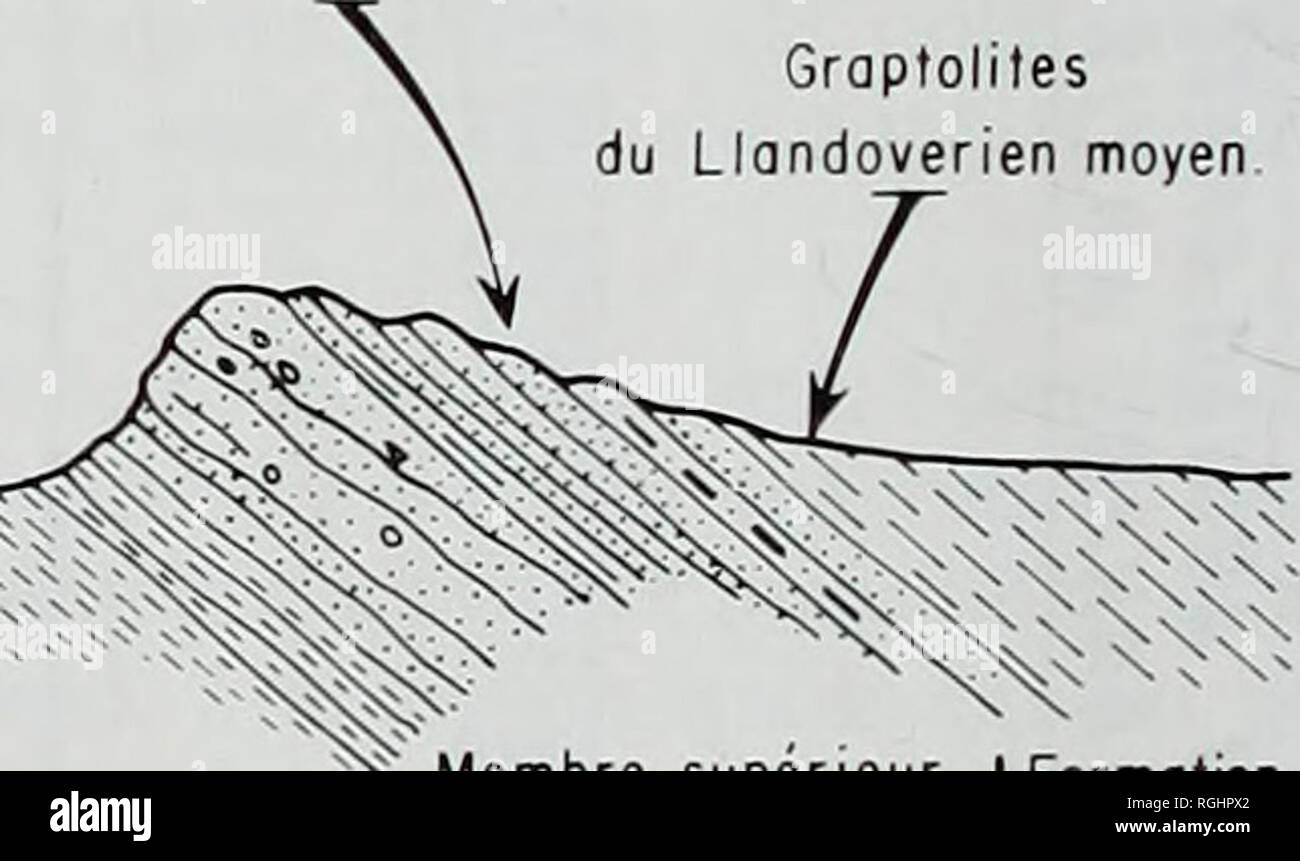. Bulletin of the British Museum (Natural History), Geology. Graptoliles du Llandoverien moyen Membre inferieur greso-conglomeratique W^^^^^^!^PH^ Membre moyen argileux d'EI Kseib. •' Membre superieur des gres du Ksar d'Ougarta Formation des argiles de I'Oued Ali. Formation greso-conglomeratique du Djebel Serraf 0 5 10 15 20 km, II11' Ph LEGRAND . 1967-1981 Fig. 3 Section in the vicinity of the Ordovician-Silurian boundary at El Kseib, Ougarta range, Algeria.. Please note that these images are extracted from scanned page images that may have been digitally enhanced for readability - coloratio Stock Photo