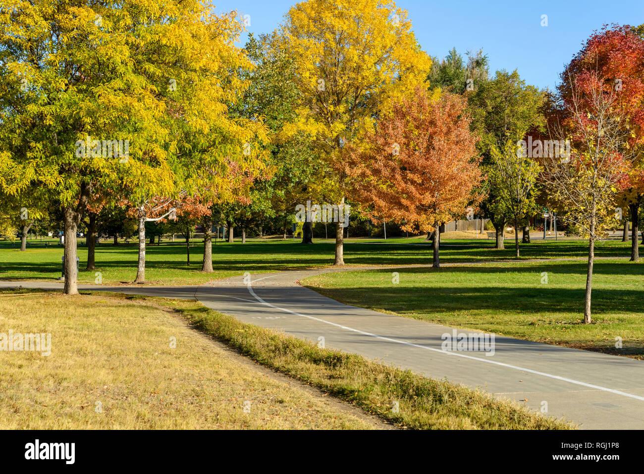 Autumn Park - Autumn afternoon at a city park, Denver-Lakewood, Colorado, USA. - Stock Image