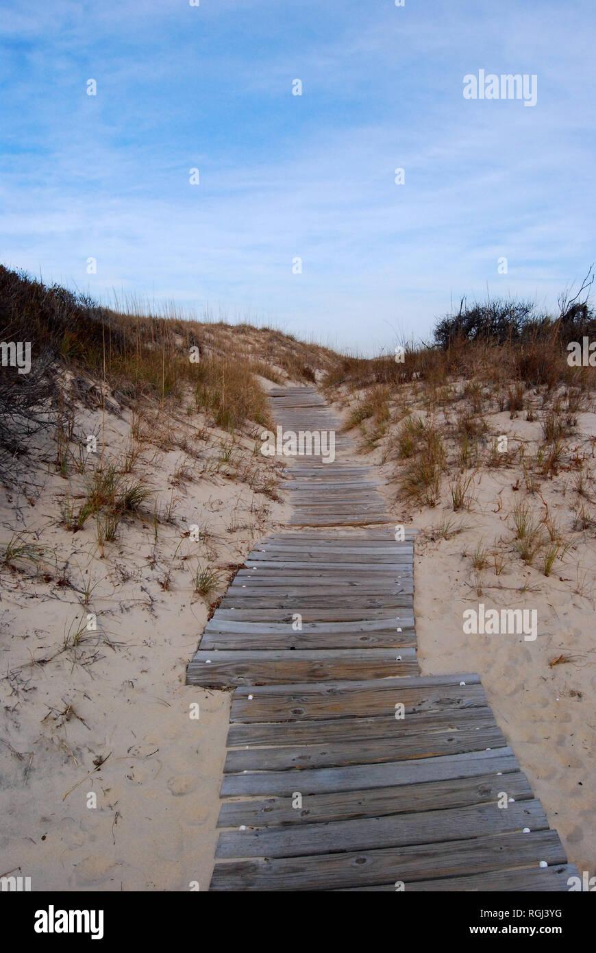 Boardwalk through sand dunes near Sandbridge Beach in Virginia Beach, Virginia - Stock Image