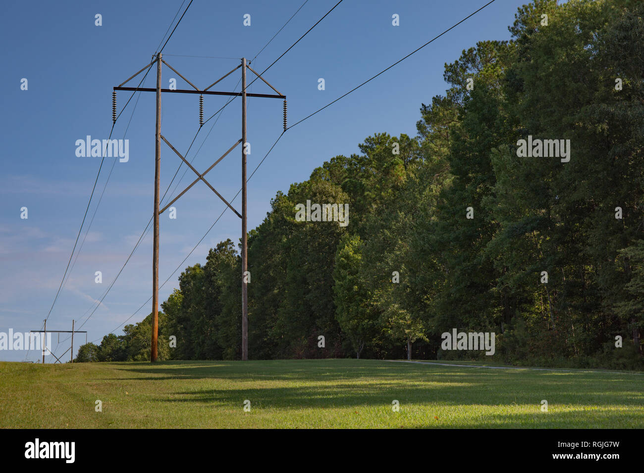 High tension power lines with a bright blue sky and green trees and grass. - Stock Image