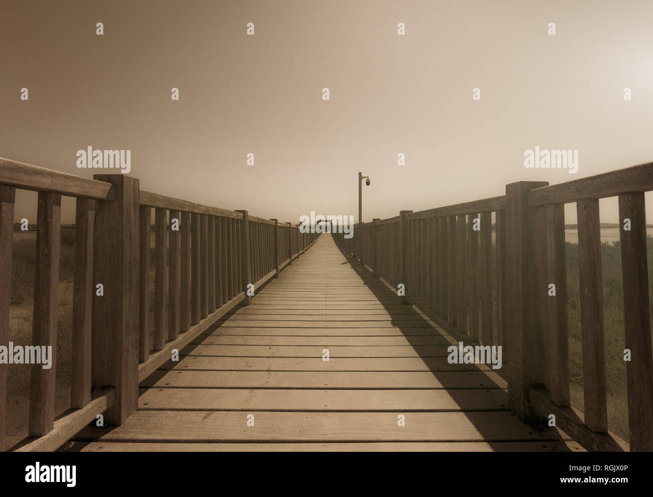 Vanishing point of a wooden path. - Stock Image