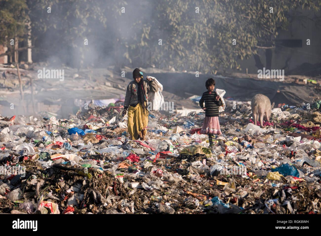 Family of ragpickers rummaging through trash at dumping ground in Rishikesh, Uttarakhand, India - Stock Image