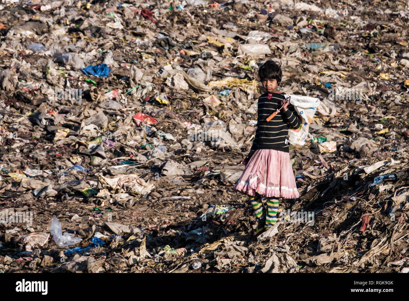 Young girl collecting recycling materials at rubbish dump in Uttarakhand, India - Stock Image