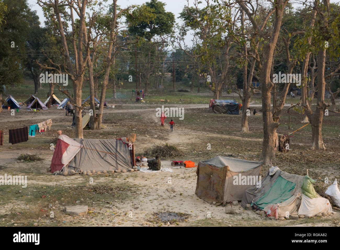 Community of people living in tents in the forest on the outskirts of Haridwar, Uttarakhand, India - Stock Image