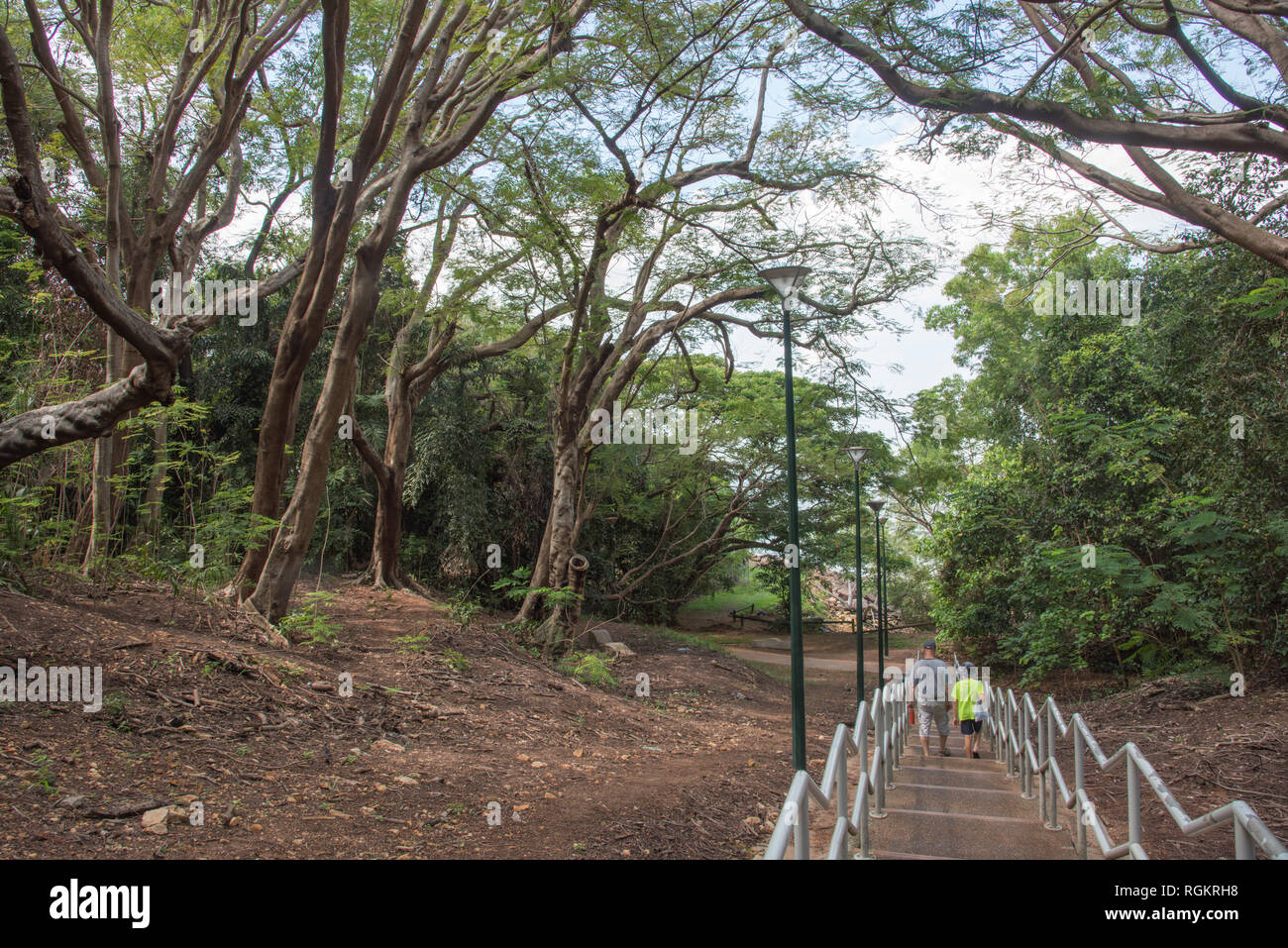 Darwin, Northern Territory, Australia-October 8,2017: Father and son walking down the rainforest steps in Darwin, Australia Stock Photo