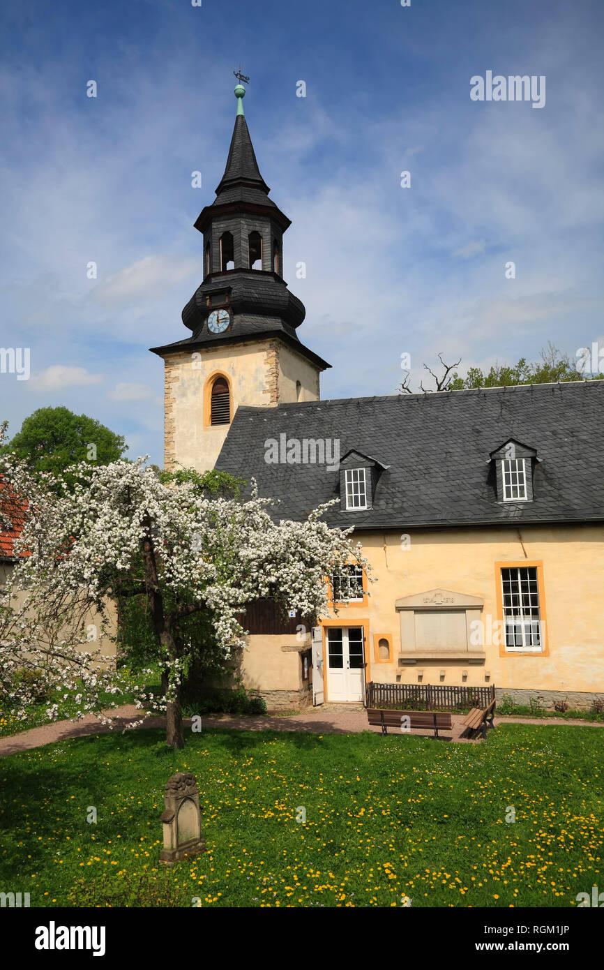 Church in Tiefurt near Weimar, Thuringia, Germany, Europe - Stock Image