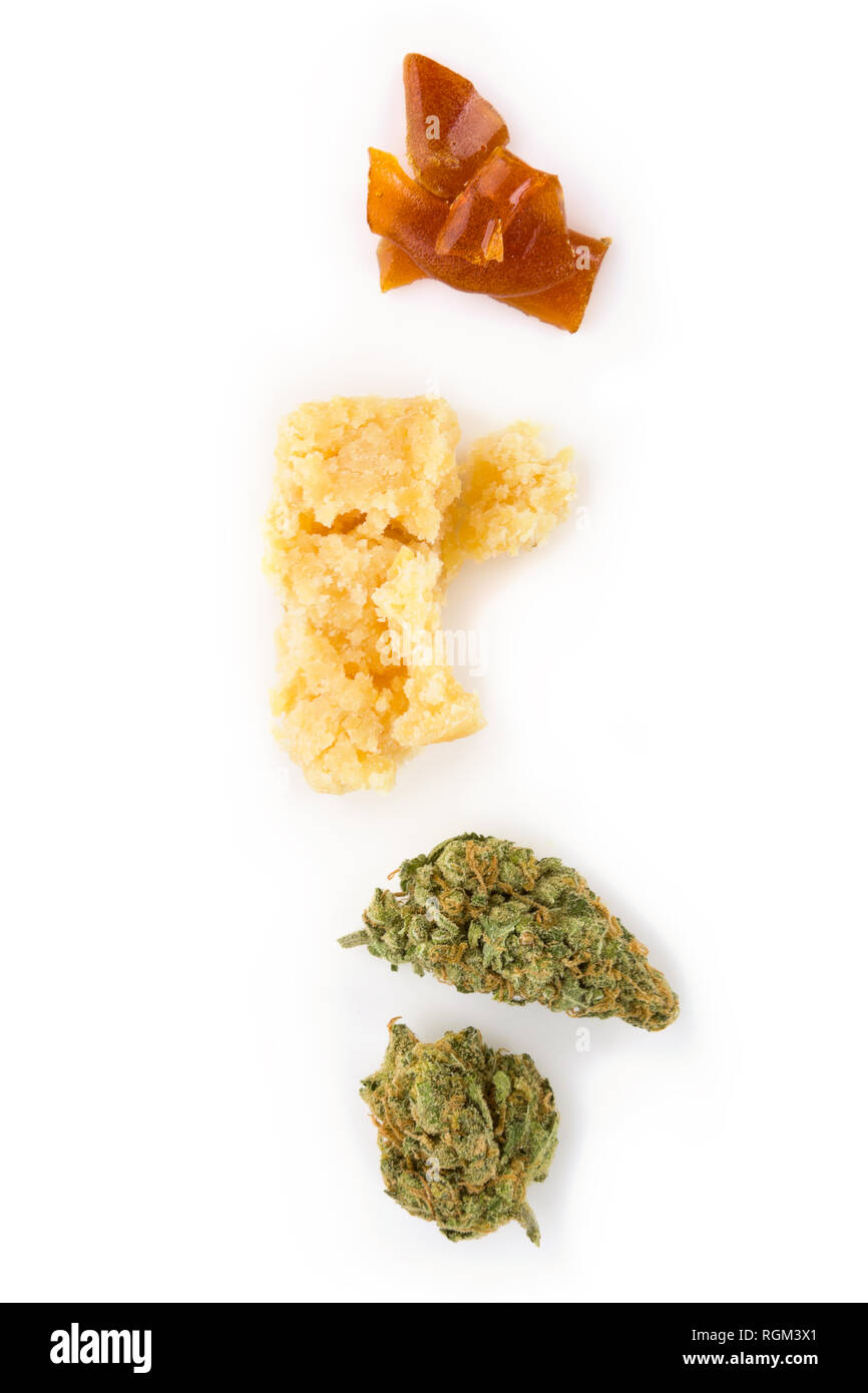 Cannabis bud, crumble, shatter concentrate on white background