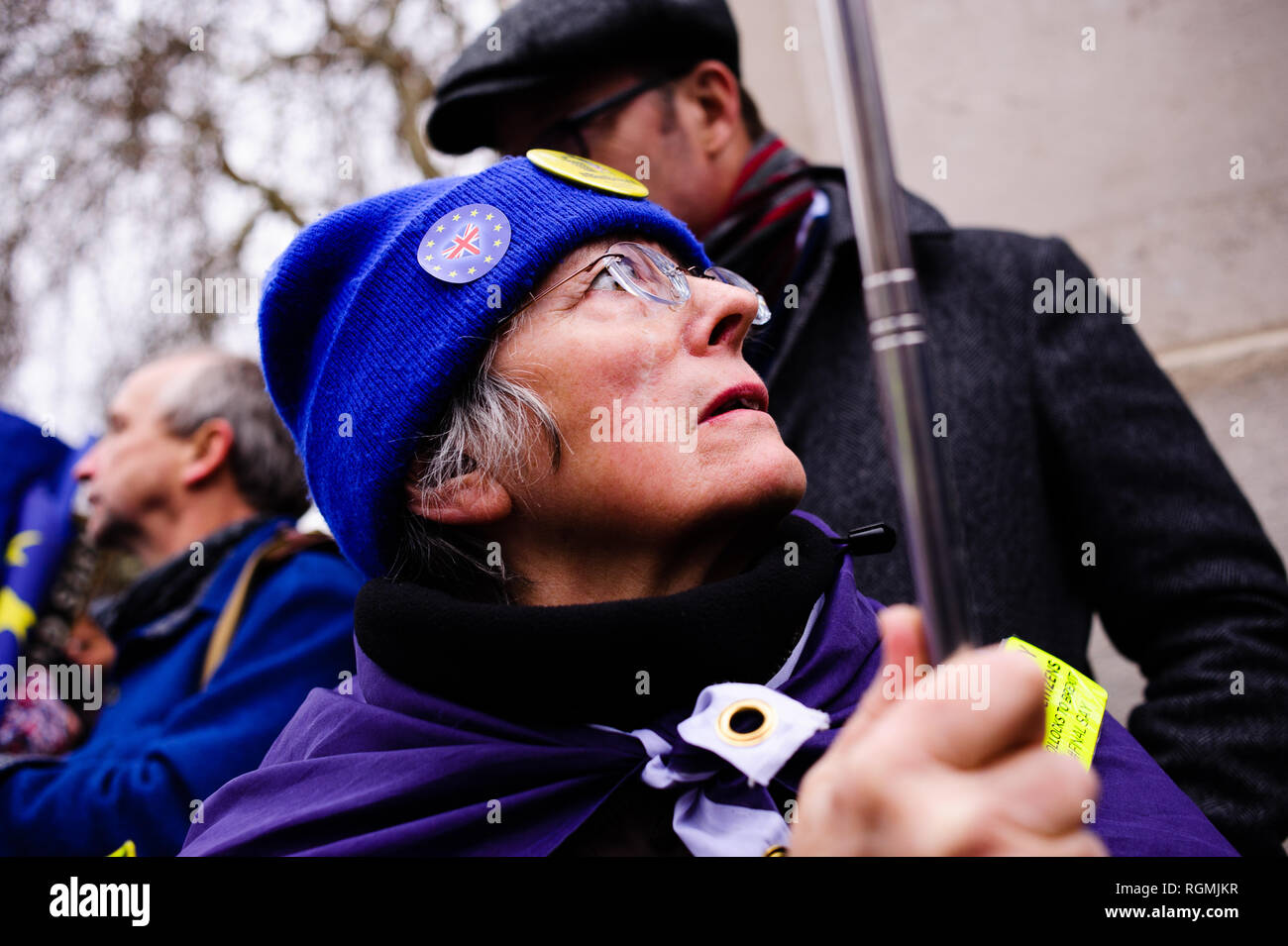 London, UK. 29th Jan, 2019. Anti-Brexit activists demonstrate outside the Houses of Parliament in central London. In the Commons, on a day of significant parliamentary activity over Brexit, MPs voted down a cross-party amendment tabled by Labour Party MP Yvette Cooper and Conservative Party MP Nick Boles designed to substantially reduce the risk of a much-feared ''no-deal'' exit from the EU. An amendment rejecting the principle of a no-deal exit was meanwhile approved, as was a government-backed amendment championed by Conservative Party MP Graham Brady calling for ''alternativ Stock Photo