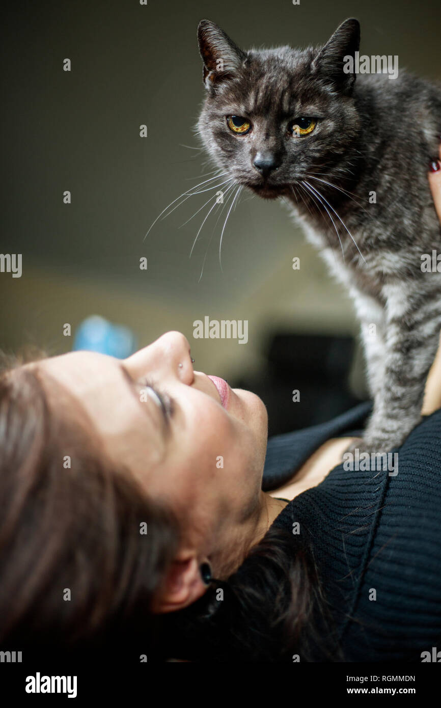 Portrait of grey tabby cat and owner at home Stock Photo