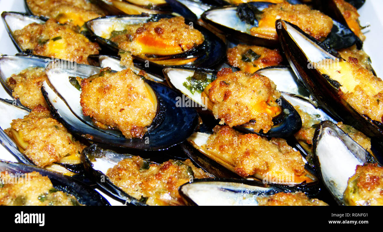 Mussels au gratin, cozze gratinate, on the plate, italian food - Stock Image
