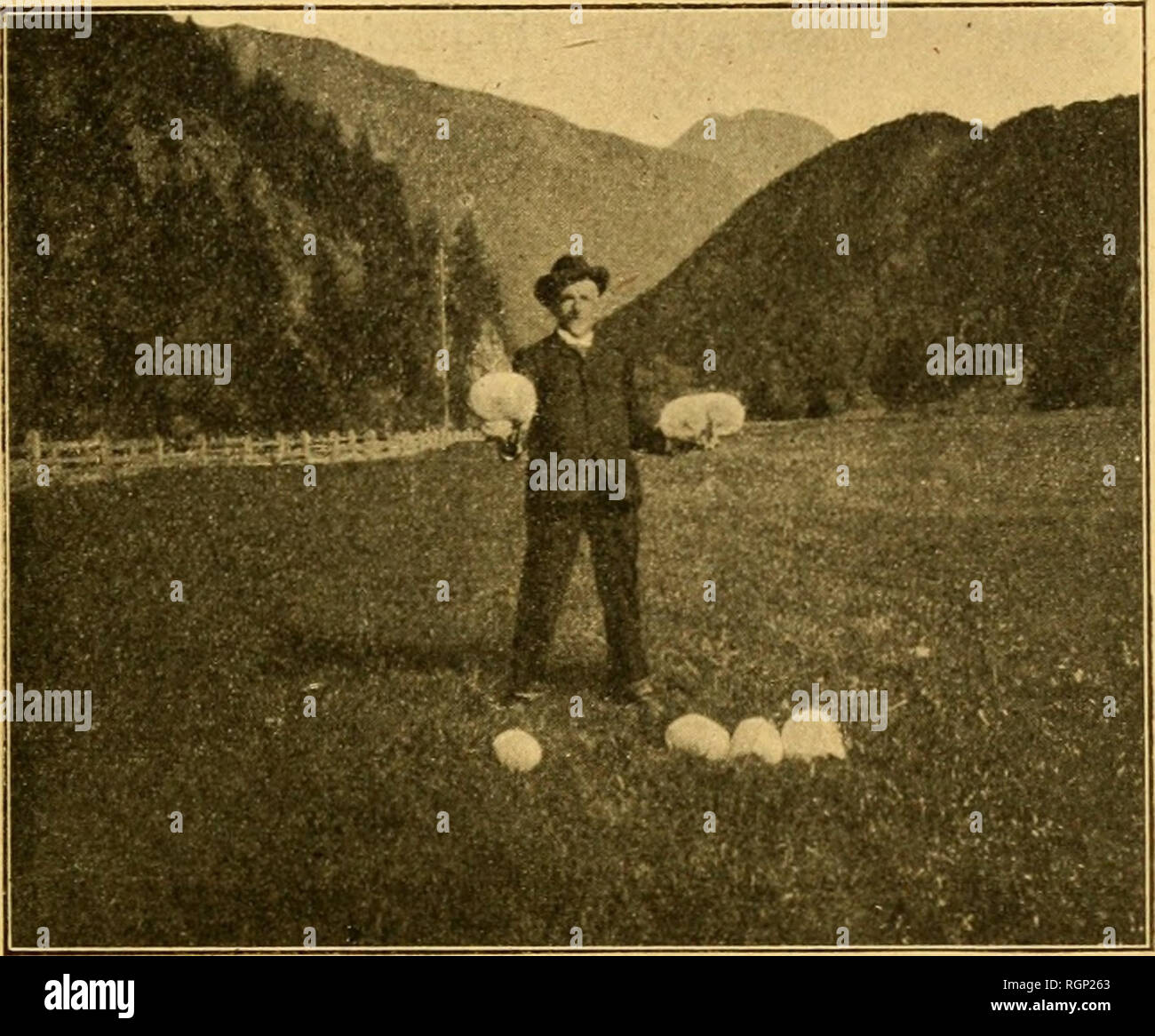 Colosse Stock Photos & Colosse Stock Images - Page 2 - Alamy
