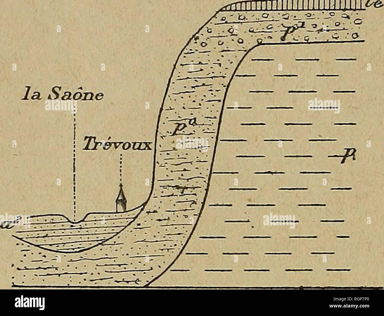. Bulletin de la Société géologique de France. Geology. 626 DEPERET. EXCURSION DU 22 AOÃT 1894 qui régnait dès l'époque du Pliocène moyen entre les dépôts gros- siers et torrentiels de la vallée du Rhône et les couches sableuses, à éléments relativement plus fins, de la vallée de la Saôoe. Cette opposition se retrouvera à partir de ce moment dans tous les dépôts qui se succèdent dans ces vallées jusqu'à l'époque actuelle. La faune des Sables de Trévoux est intéressante à la fois par ses Mollusques fluviatiles de faciès levantin et par ses nombreux débris de Mammifères. - Stock Image