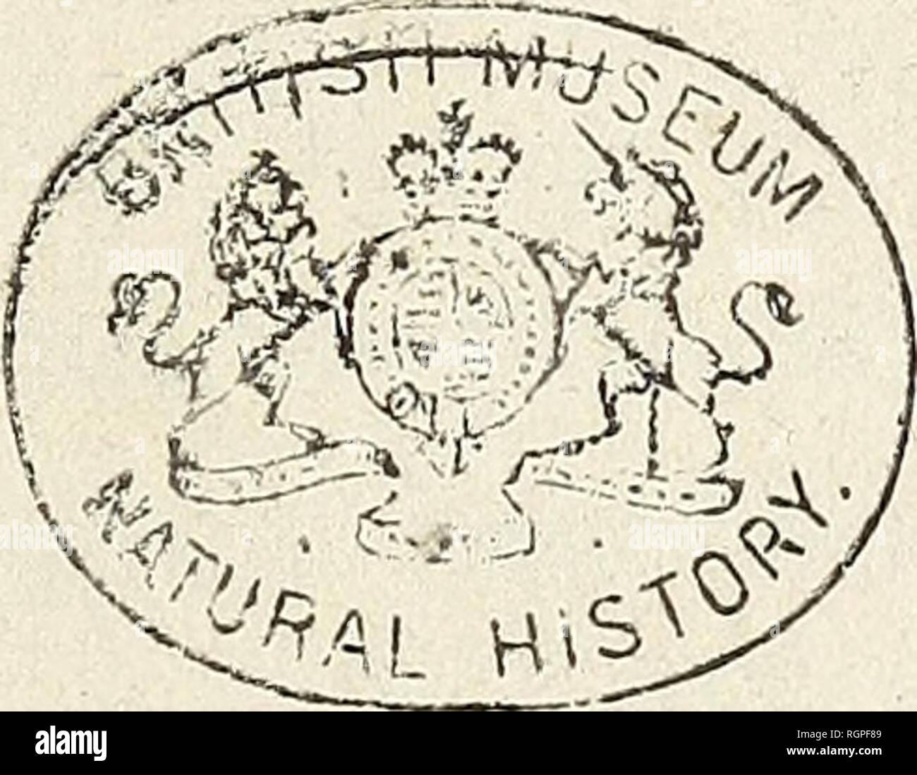. Bulletin de la Société Impériale des Naturalistes de Moscou. DE LA xrcteté Impétxait îre iîlosrou. ANNÉE 1838» N° IV.. DE L'IMPRIMERIE D'AUGUSTE SEME3NT, IMPRIMEUR DE l'aCADEMIE IMPERIALE MEDICO-CHIRURGICALE* 1838.. Please note that these images are extracted from scanned page images that may have been digitally enhanced for readability - coloration and appearance of these illustrations may not perfectly resemble the original work.. Moskovskoe obshchestvo liubitelei prirody. Stock Photo