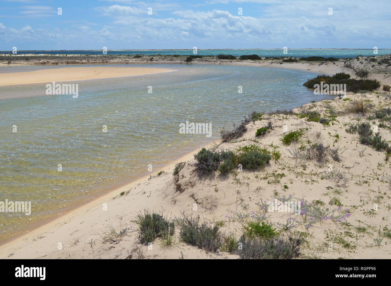 Coastal lagoon in Armona island, part of the Ria Formosa Natural Park in the Algarve region of southwestern Portugal - Stock Image