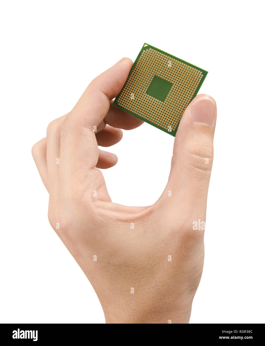 Computer processors CPU in hand, isolated on white background - Stock Image