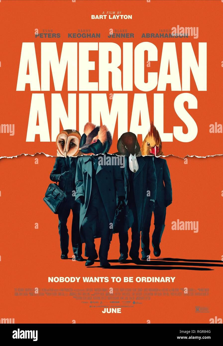 MOVIE POSTER AMERICAN ANIMALS (2018) - Stock Image